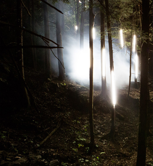 Foresta Lumina - Multimedia nighttime experience at Parc de